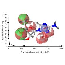 Entwicklung von DNMT1 Inhibitoren